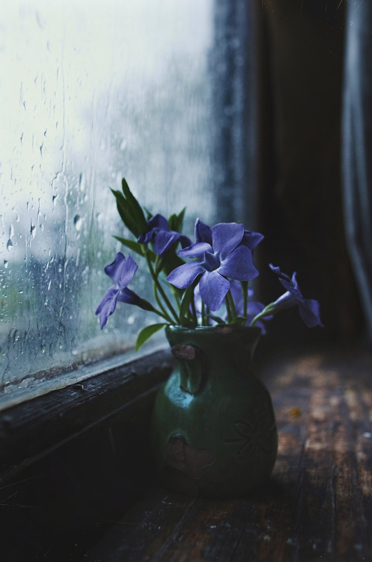 цветы, окно, натюрморт, весна, дождь, вечер, анна салтыкова, ваза, деревня, сумерки, капли, Анна Сергеевна Салтыкова (Анка)