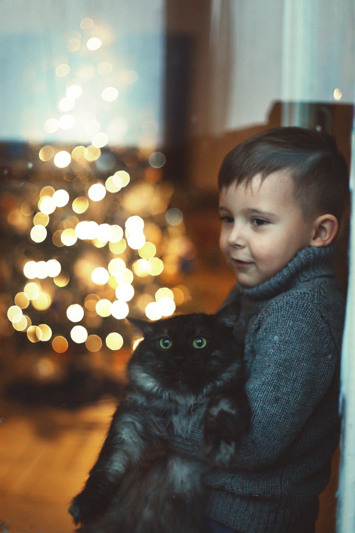 праздник,дети, окно, Алена Пайвина
