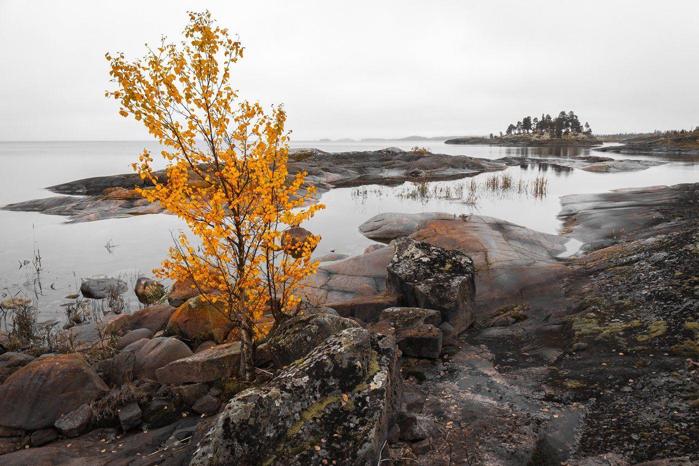 ладога, ладожское озеро, ладожские шхеры, карелия, осень, фототур, Арсений Кашкаров