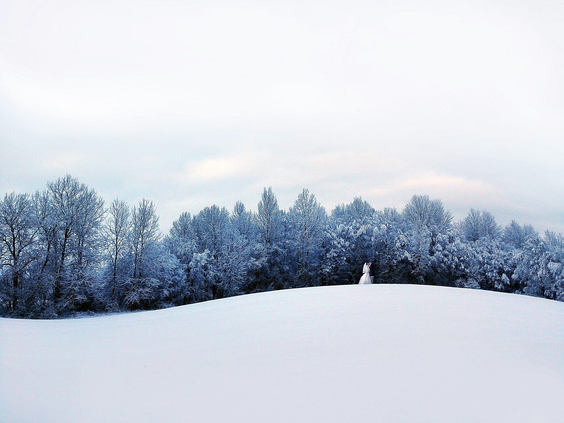 зима прогулка молодожены снег молодожены жених невеста беларусь помолейко pomoleyko свадьба свадебное, Павел Помолейко