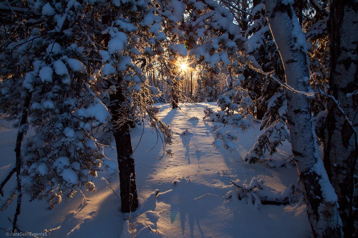 алтай, белокуриха, зима, снег, закат, Евгения Эс