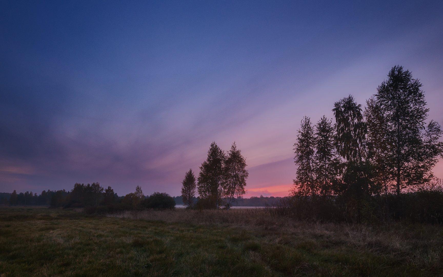 россия, подмосковье, осень, вечер, закат, небо, облака, свет, поле, деревья, трава, Иван Мухин