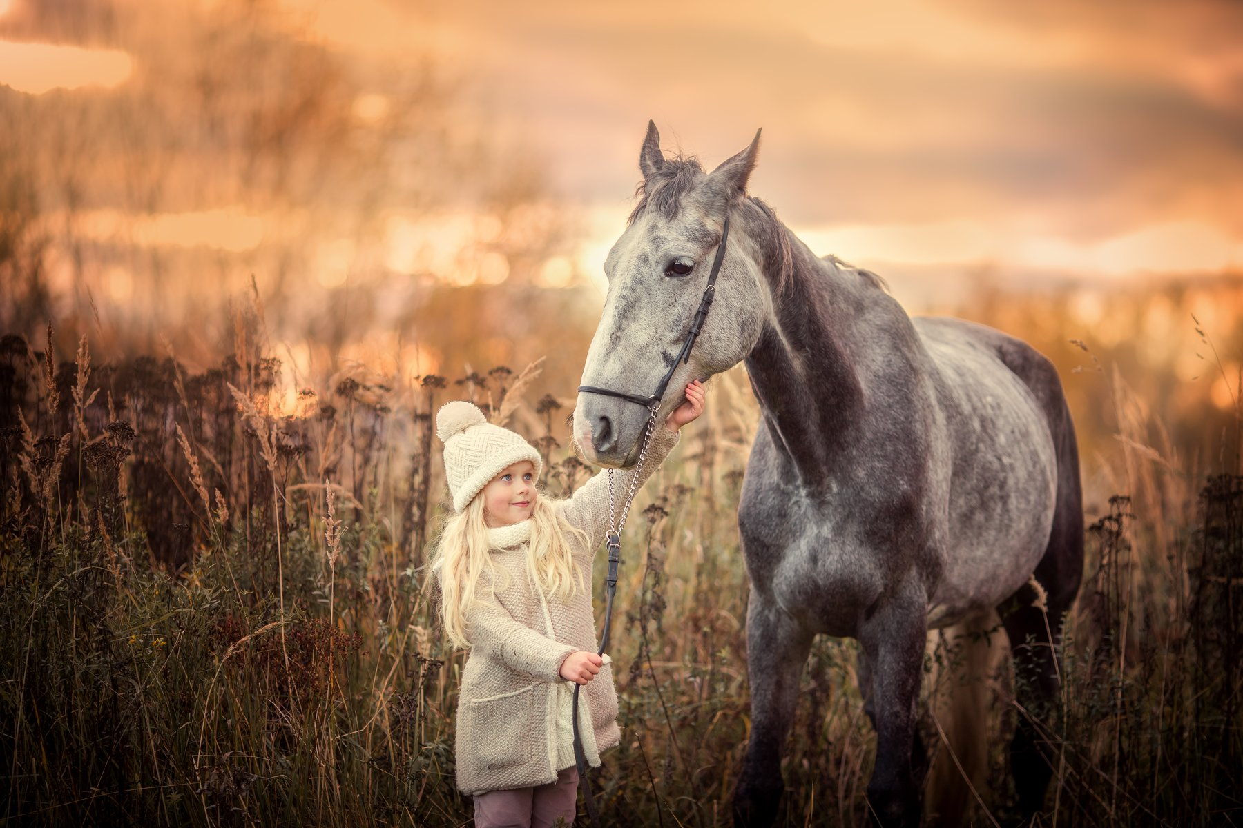Девочка, лошадь, знакомство, закат, осень, Yulia