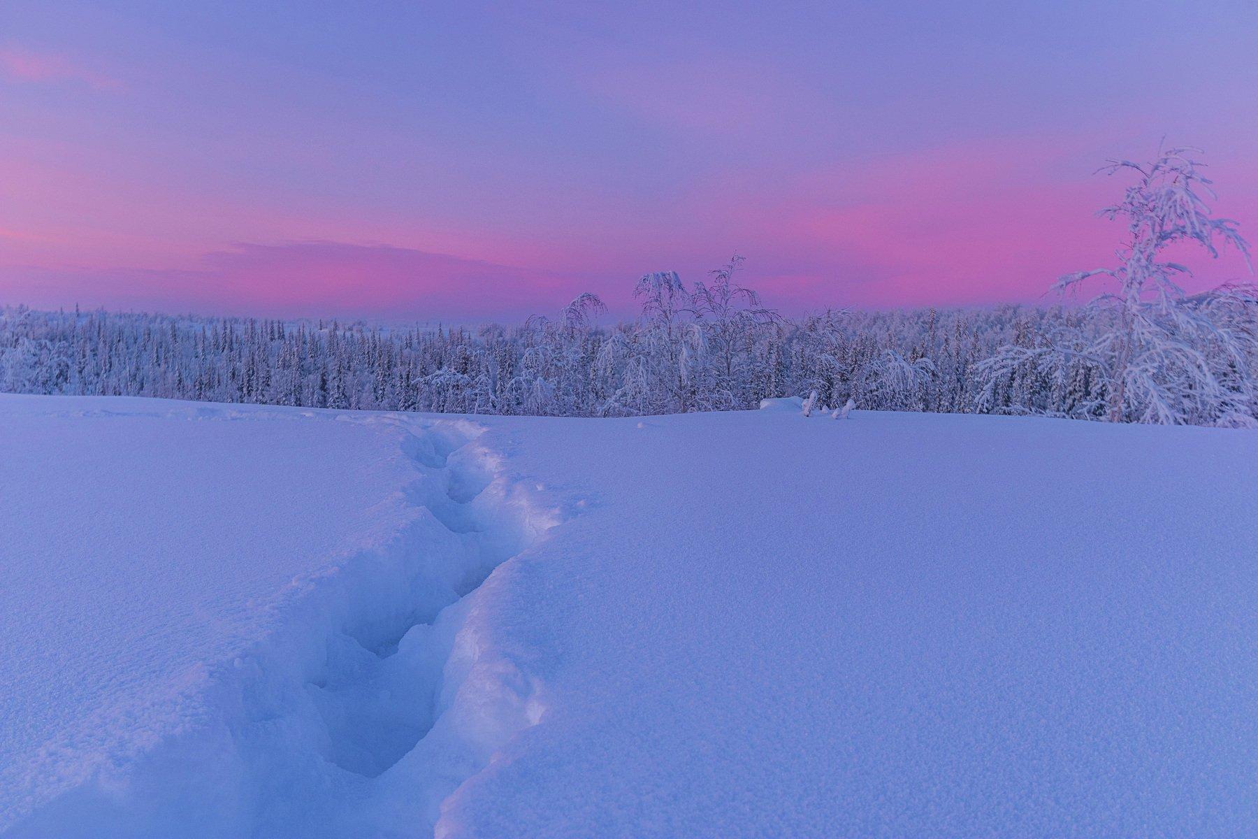 ямал , зима , природа, салехард , январь,  ямал ,север, Братцева Анастасия