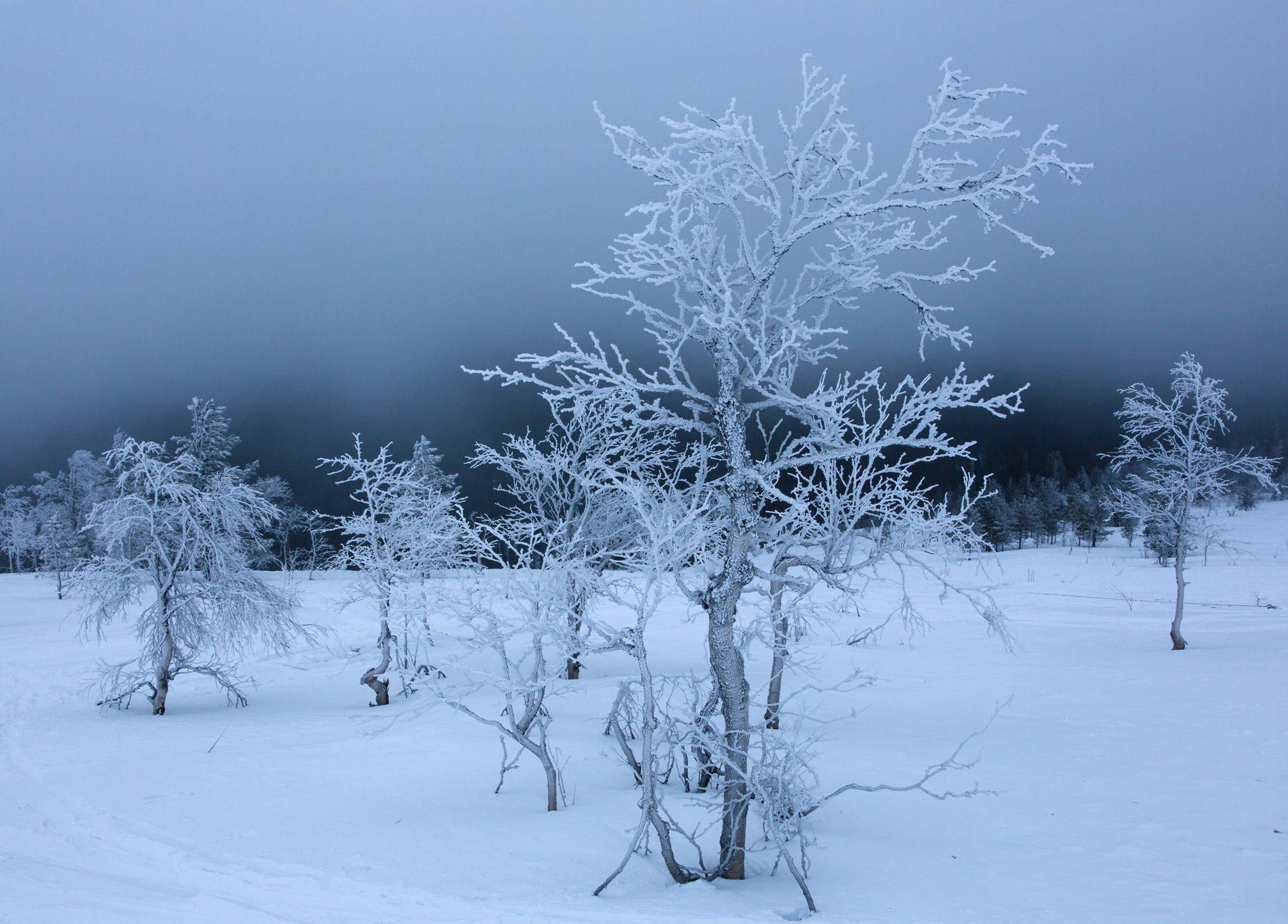 зима, горы, урал, деревья, снег, иней, облака, антон селезнев, путешествие, Антон Селезнев