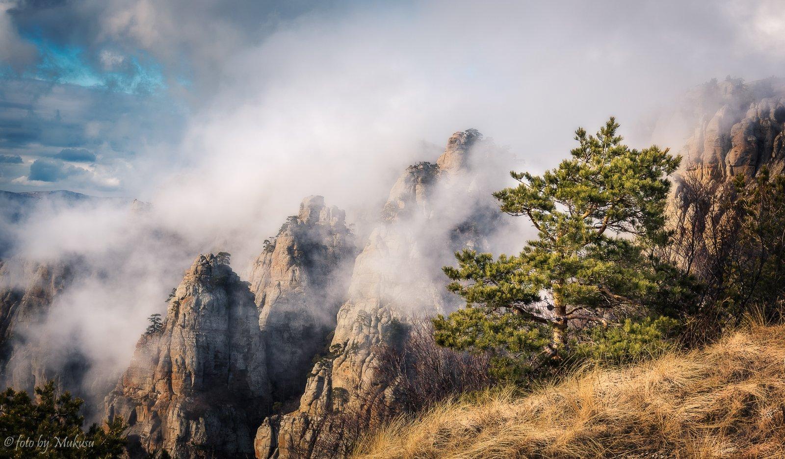 крым,landscape,travel,russia,демерджи, Алексей Самойленко