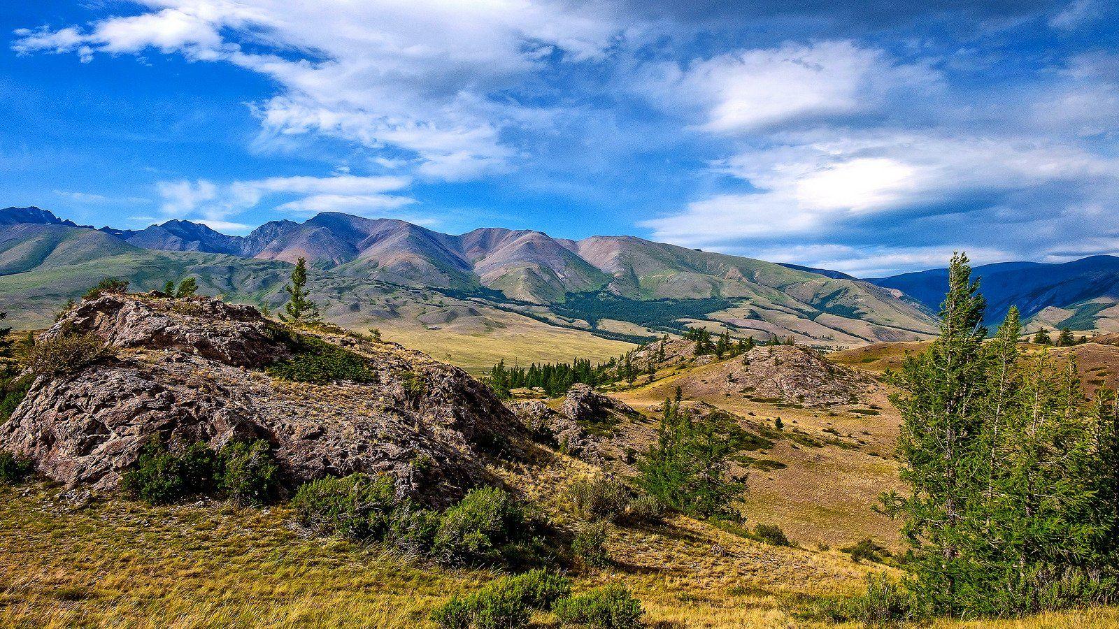 пейзаж, лето, горы, Горный Алтай , Александр Потапов