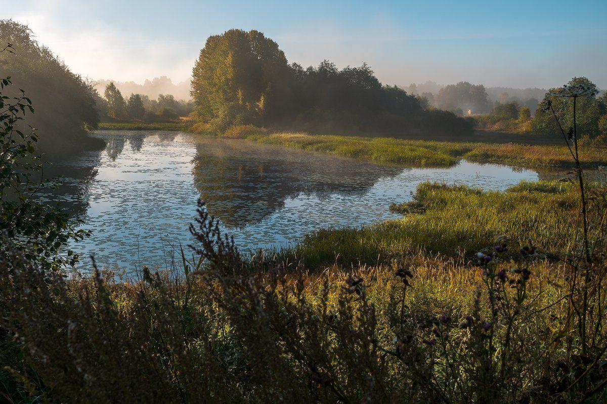путешествия,природа,пейзаж,туман,утро,рассвет,ленинградская область, Юлия Лаптева