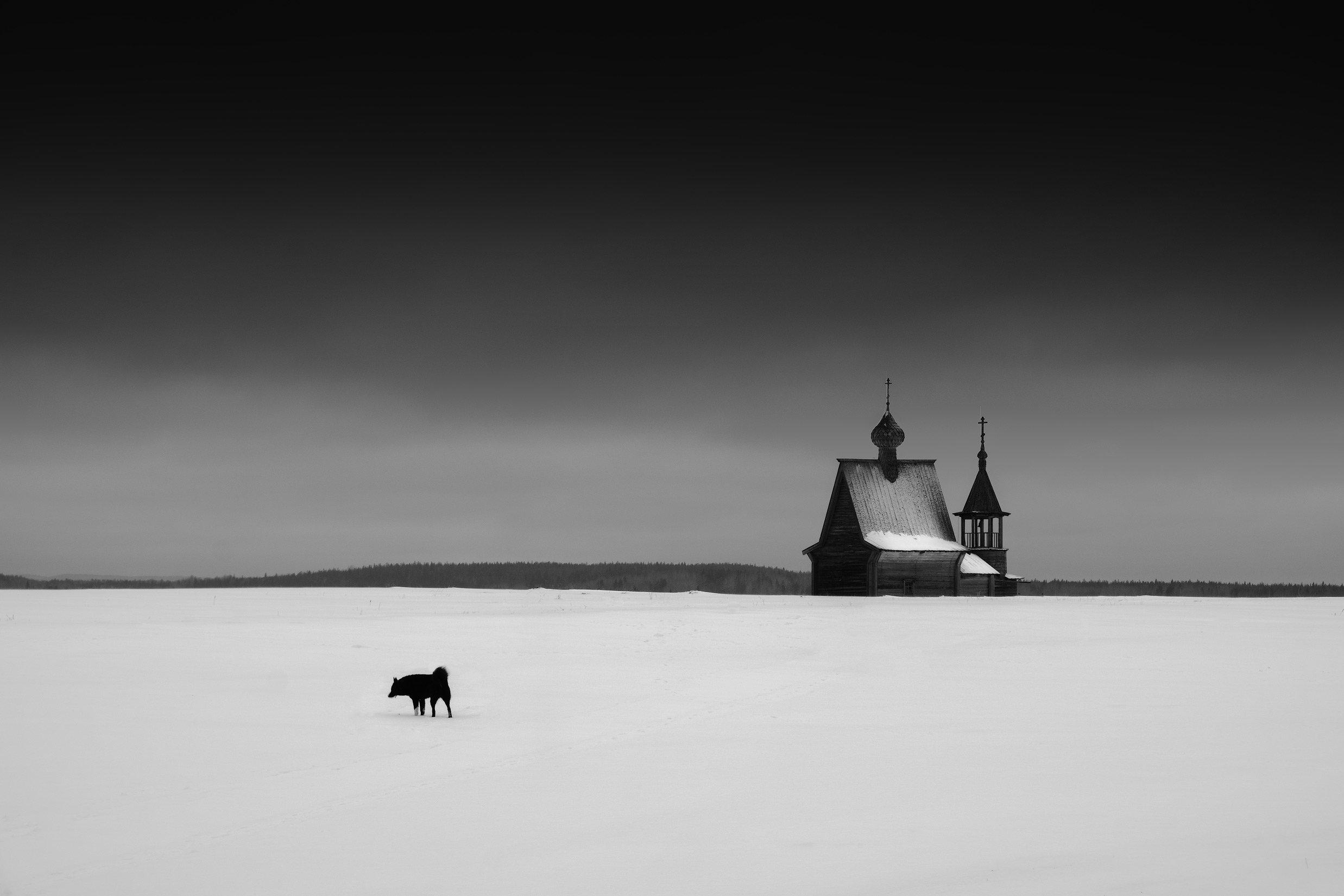 россия, архангельская область, кенозерье, пейзаж, зима, снег, минимализм, церковь, север, заповедник, Оборотов Алексей