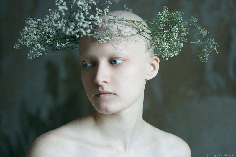 венок, цветы, весна, Natalia Ciobanu