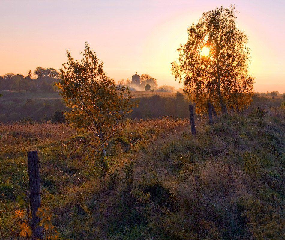 осень, вечер, закат, солнце, березки, Владимир