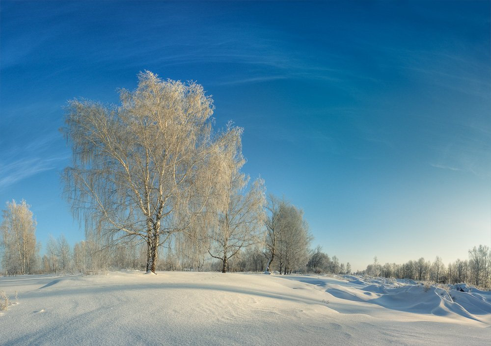 мороз, иней, зима, снег, Mishin Ilay