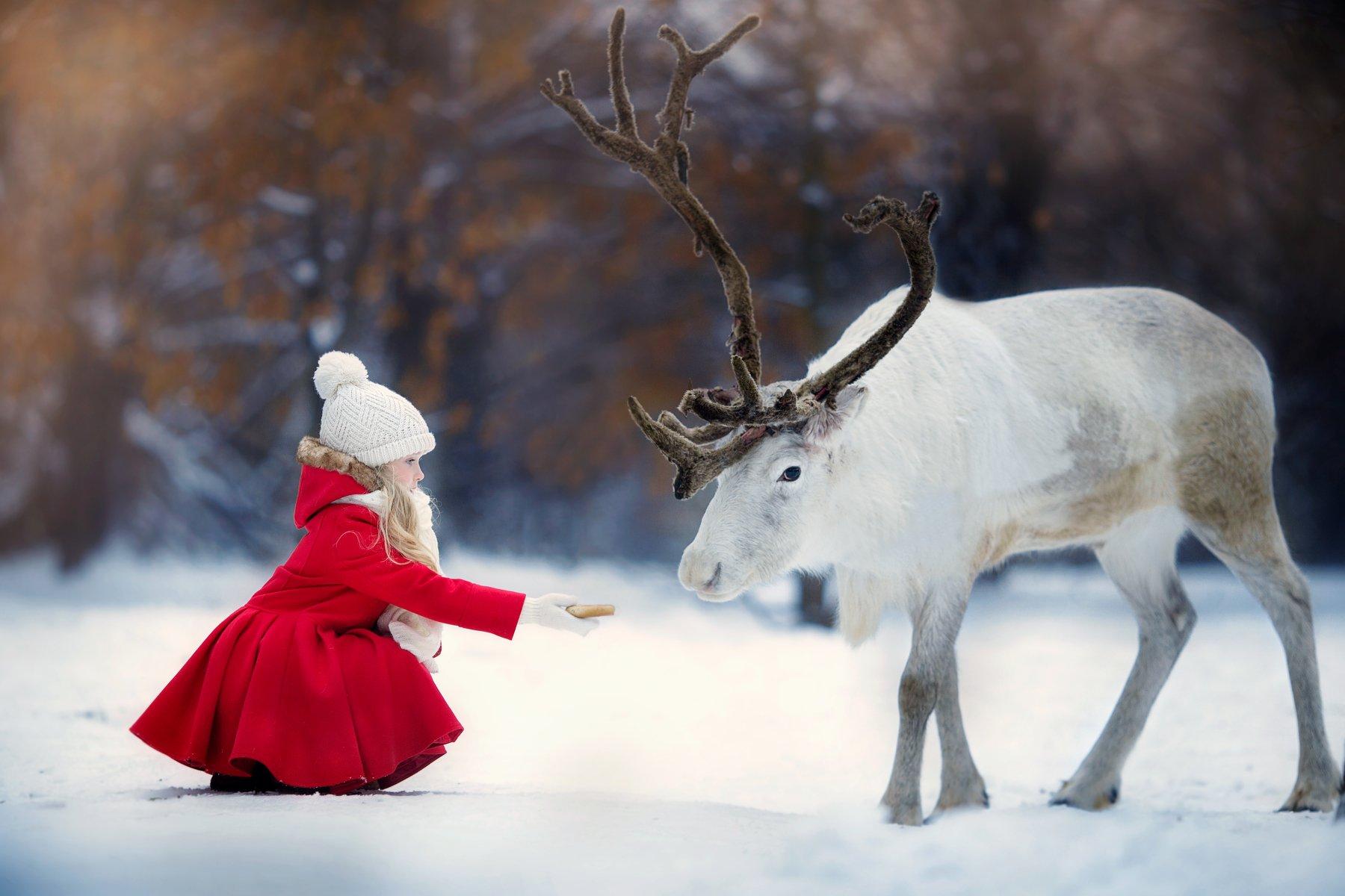 Герда, девочка, северный олень, зима, снег, сказка, Yulia