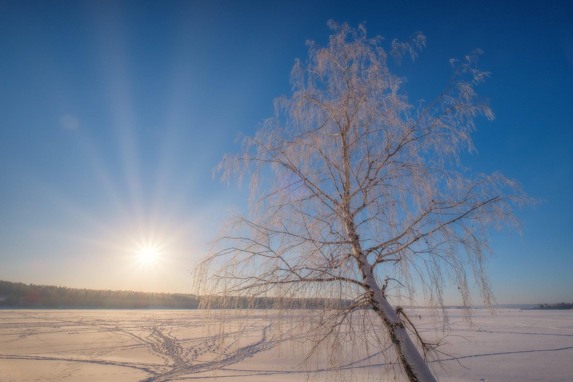 урал, зима, река, лед, снег, деревья, рассвет, утро, береза, рыбаки, солнце, лучи, Андрей Чиж