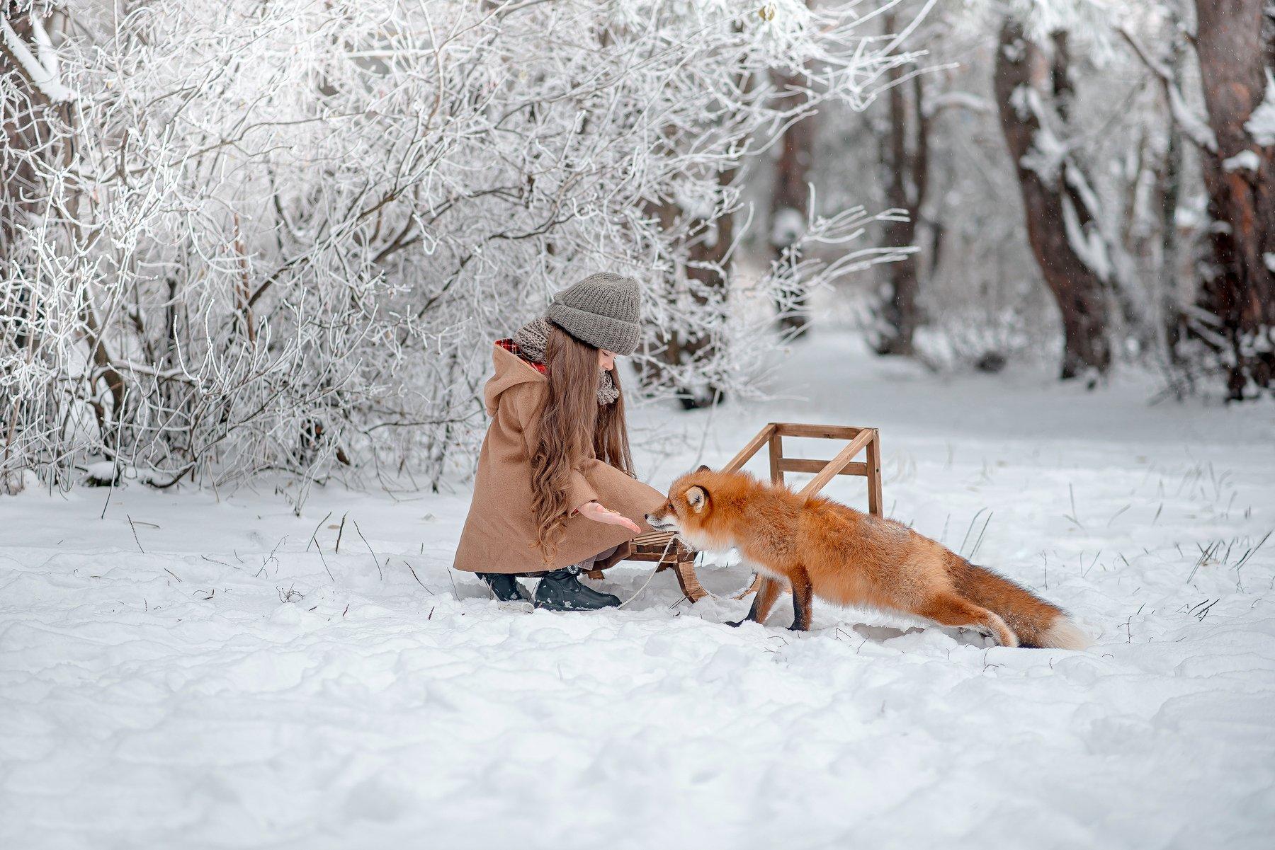 ребенок, лиса, семья, зима, fox, kids, forest, Стрелкова Мария