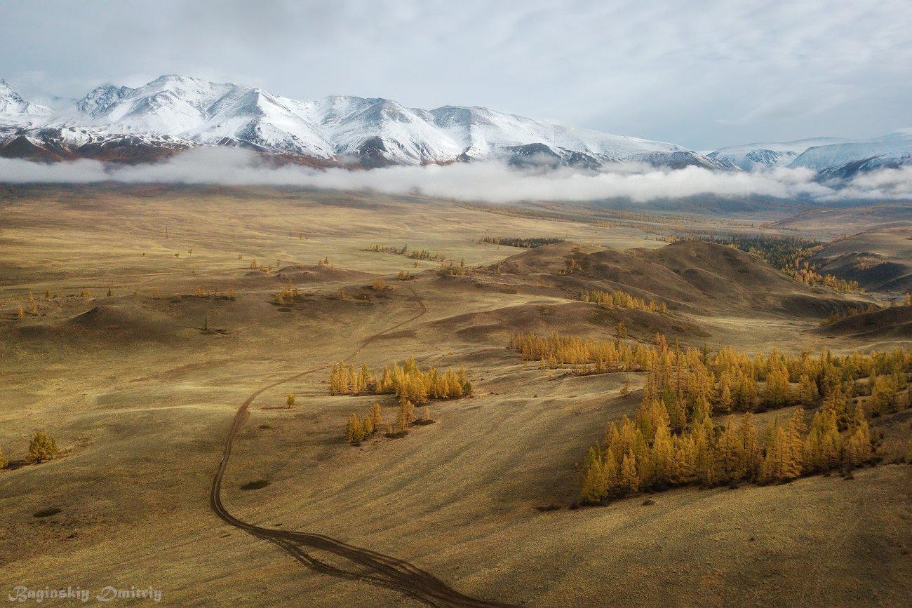 алтай, осень, горы, степь, Dmitriy  Baginskiy