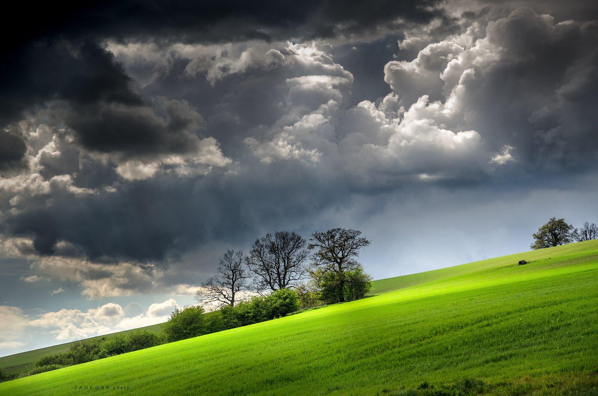 облака, пейзаж, поле, зеленое зерно, трава, деревья, небо, zanfoar, чешская республика, zanfoar,czech republic,bohemia,nikon d7000,, Zanfoar