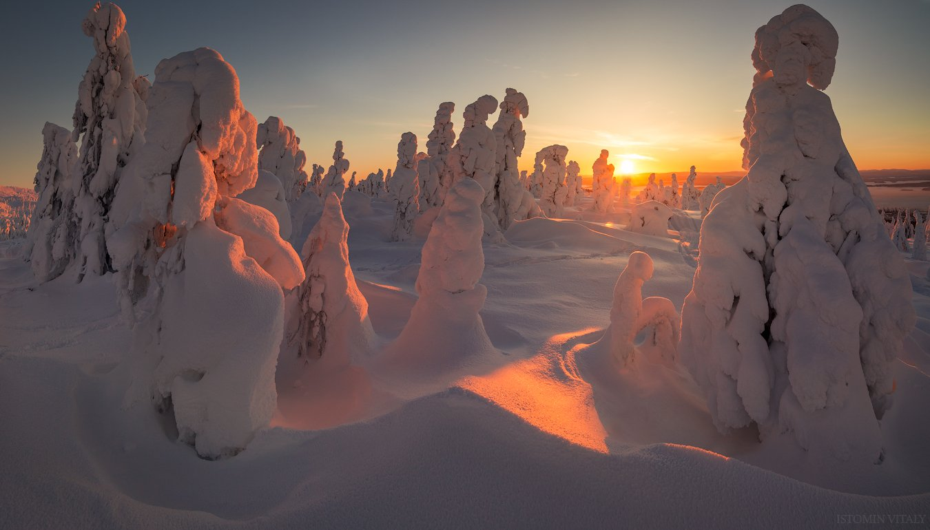 Пейзаж,закат,россия,солнце,свет,деревья,красиво,кольский,север, Истомин Виталий
