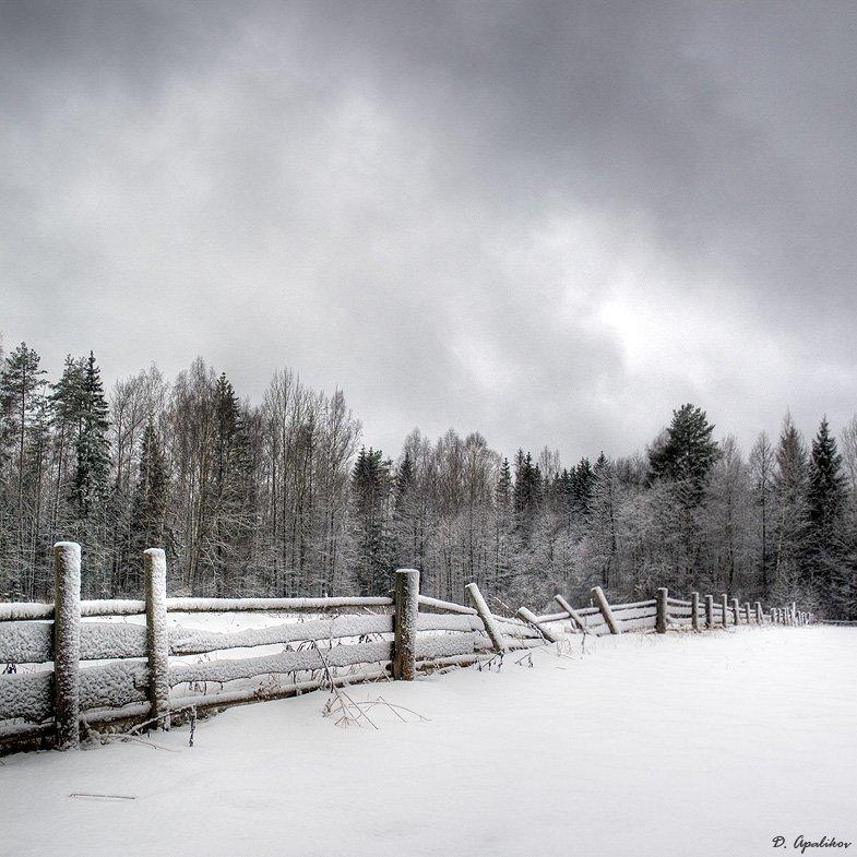 снег, изгородь, лес, тучи, Dmitry Apalikov