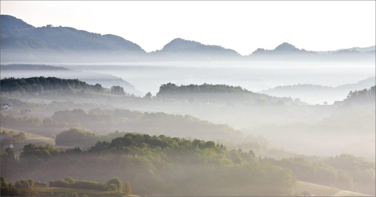 туман, Нетушки