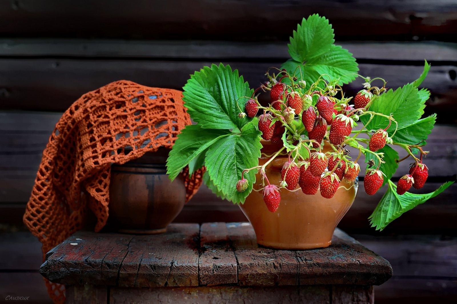 натюрморт, лето, аромат,клубника,ягода, крынка,табурет,горшочек, Инаида