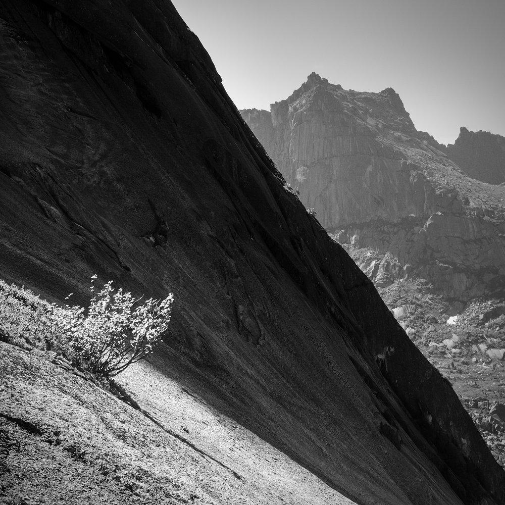 чб, черно-белое, черный, белый, ергаки, красноярский край, природа, пейзаж, путешествия, туризм, тур, скала, куст, дерево, крутой, высокий, большой, горы, хребет, Дмитрий Антипов