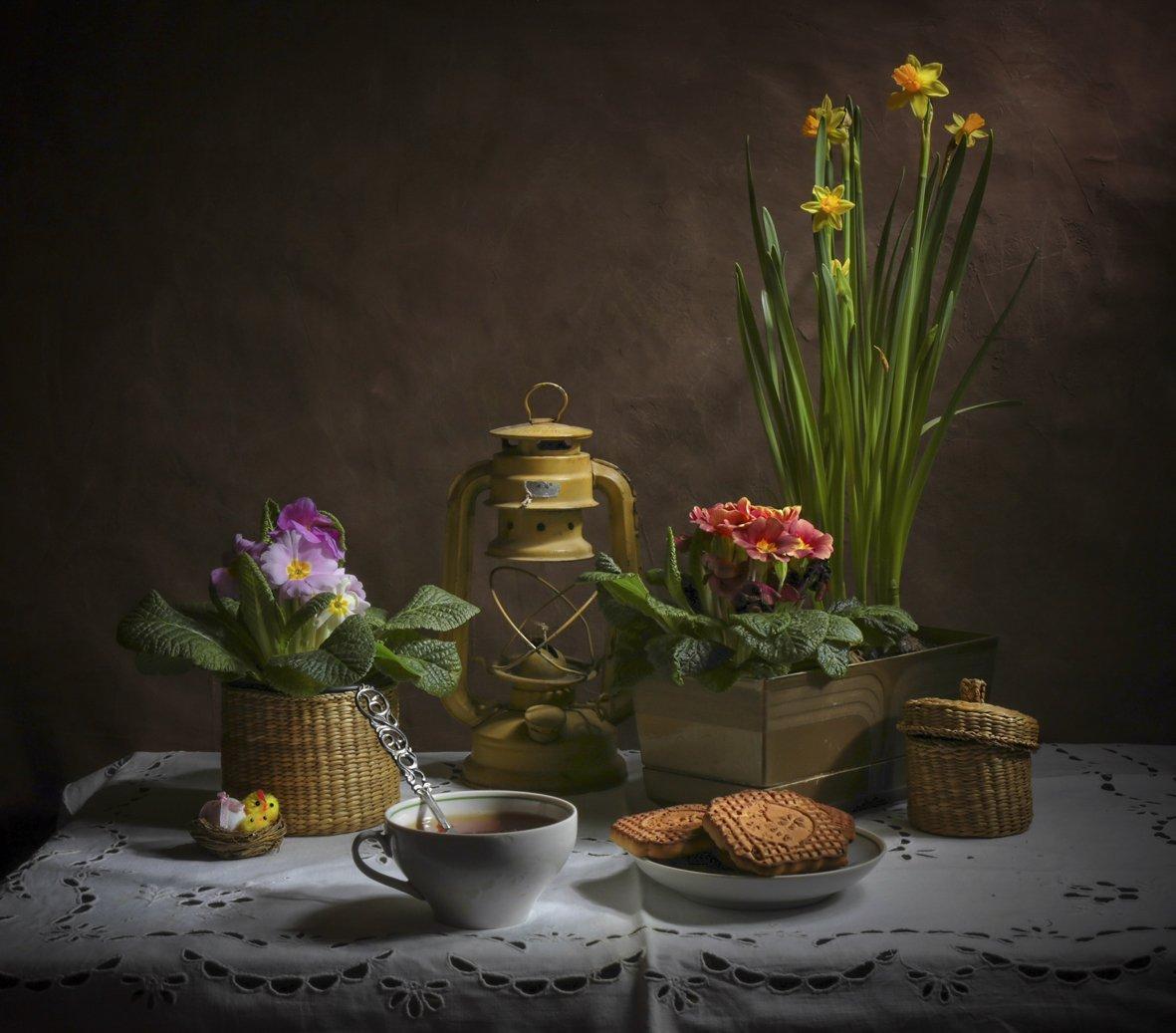 весна,нарцис,примула,натюрморт,, Zadorina Svetlana