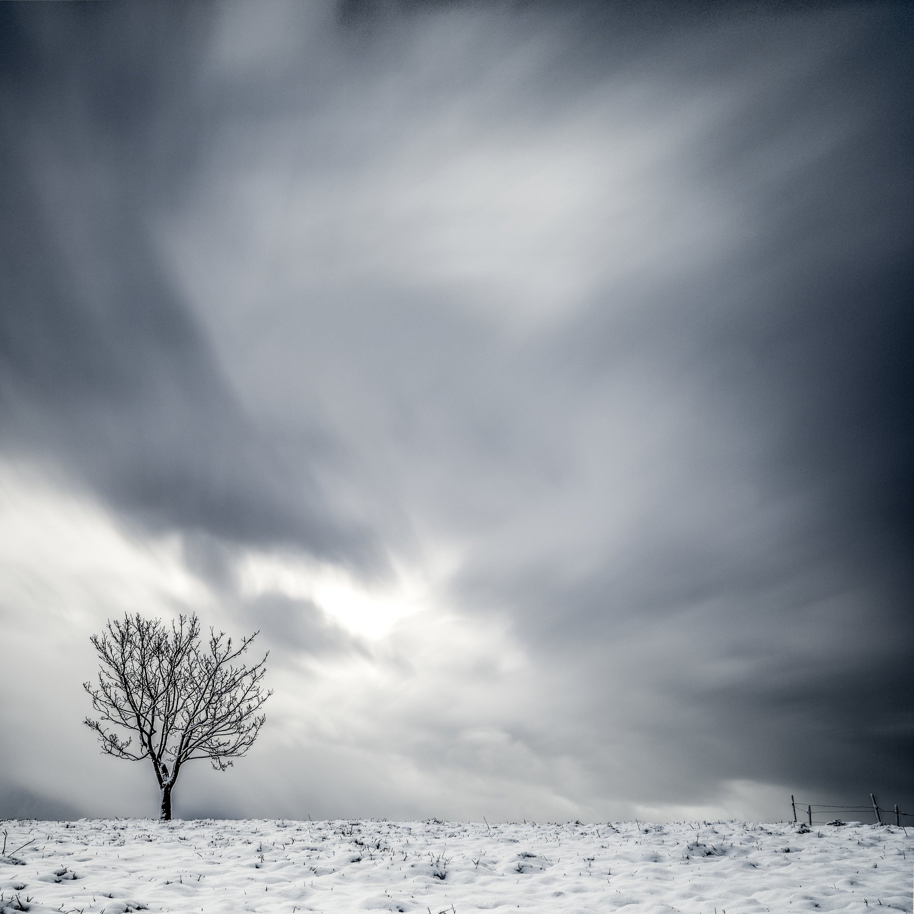 tree,winter,long exposure,minimalismus,sky, Felix Ostapenko