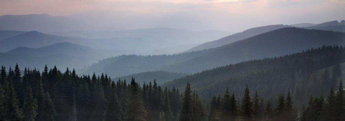 карпаты, осень, природа, пейзаж, , лес, горы, вечер, Piligrim