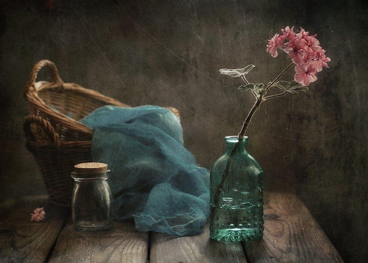 натюрморт,герань,цветы, Наталия