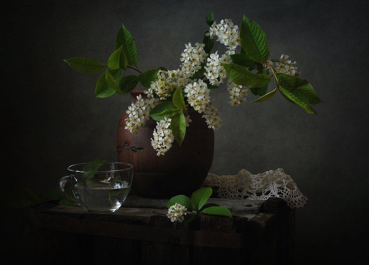 натюрморт,черемуха,весна, Наталия