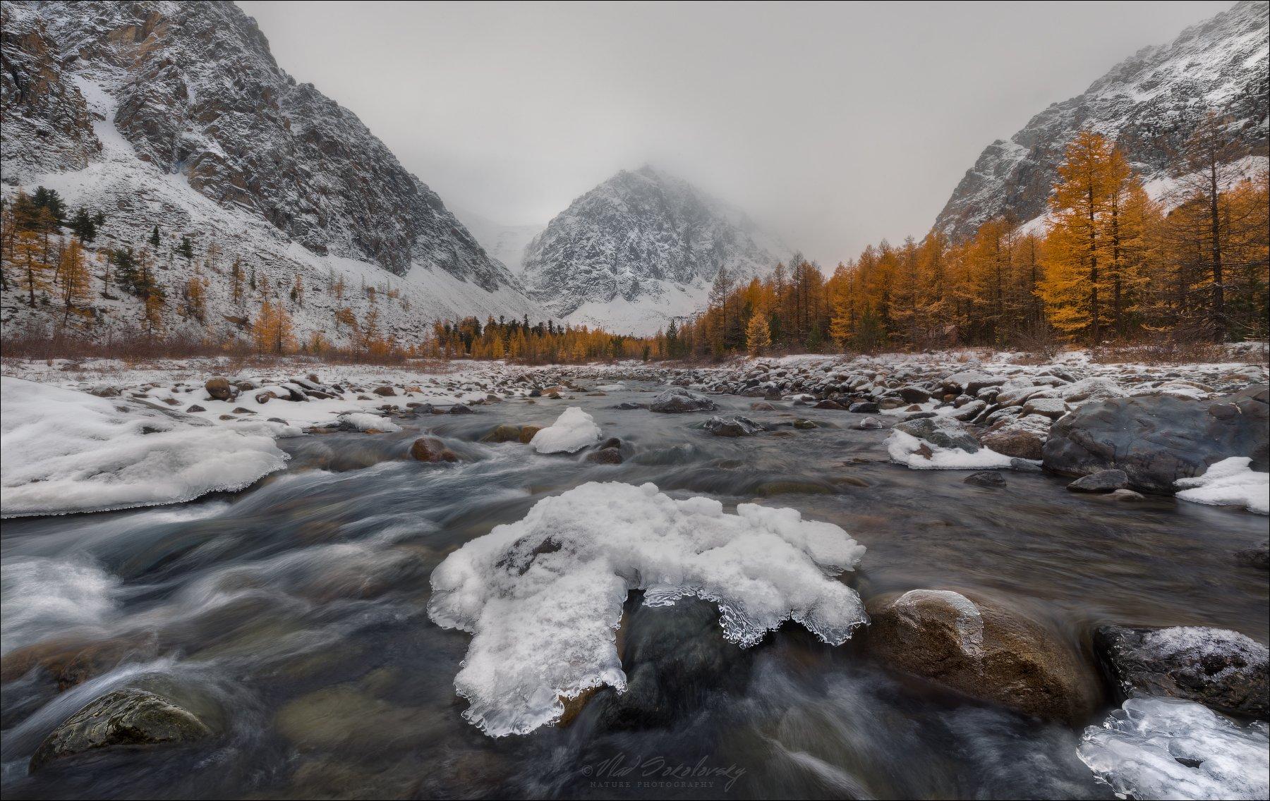 алтай, актру, караташ, осень, горы, туман, Влад Соколовский