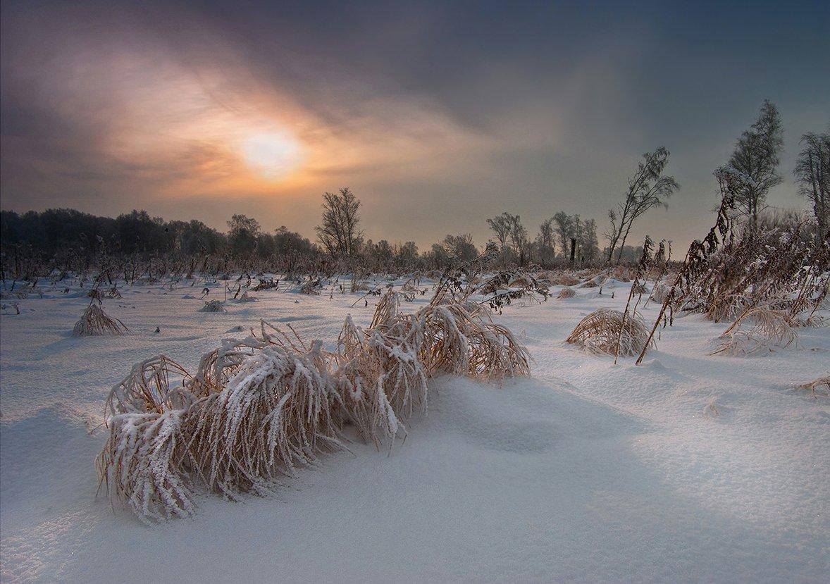 зима, вечер, пейзаж, снег, трава, свет, солнце, небо, валерий_чичкин, Валерий Чичкин