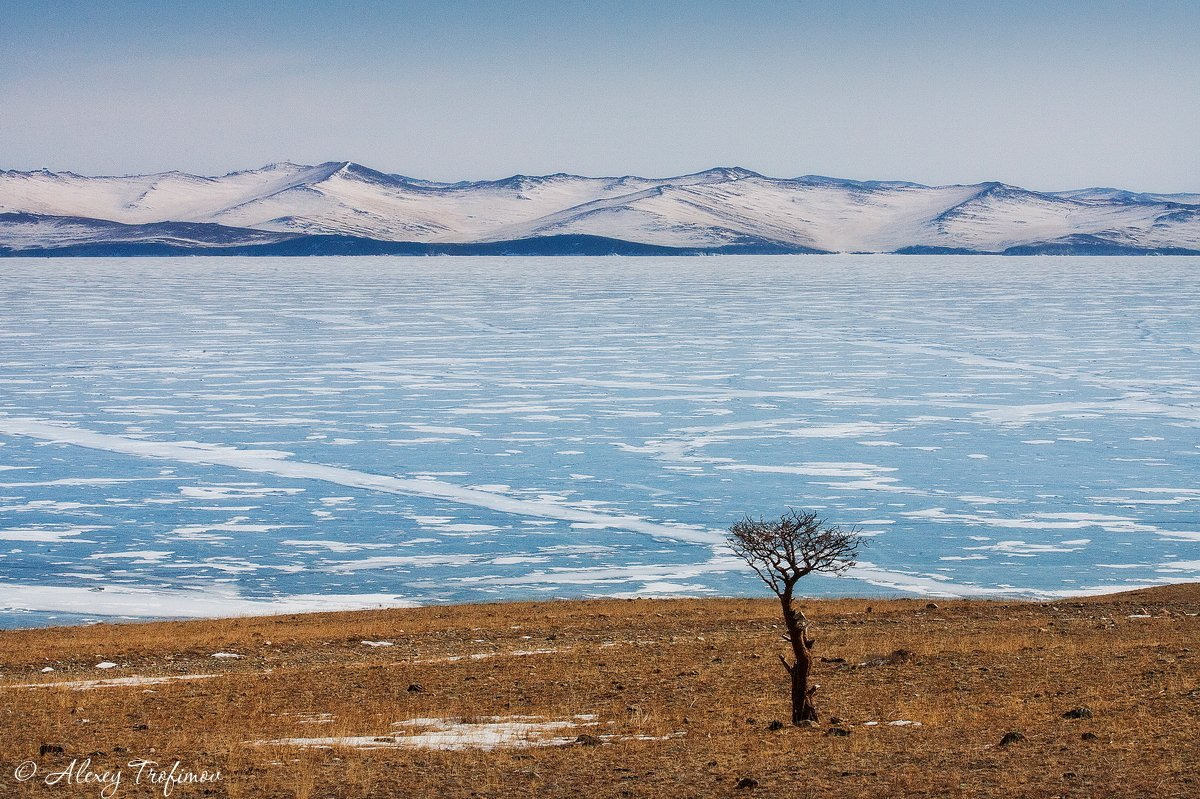 байкал, пейзаж, ольхоне, Алексей Трофимов