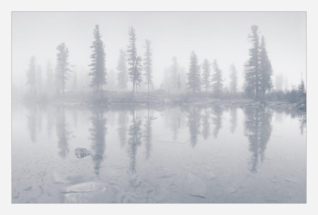 ергаки, озеро, деревья, кедры, отражение, туман, Ермолицкий Александр