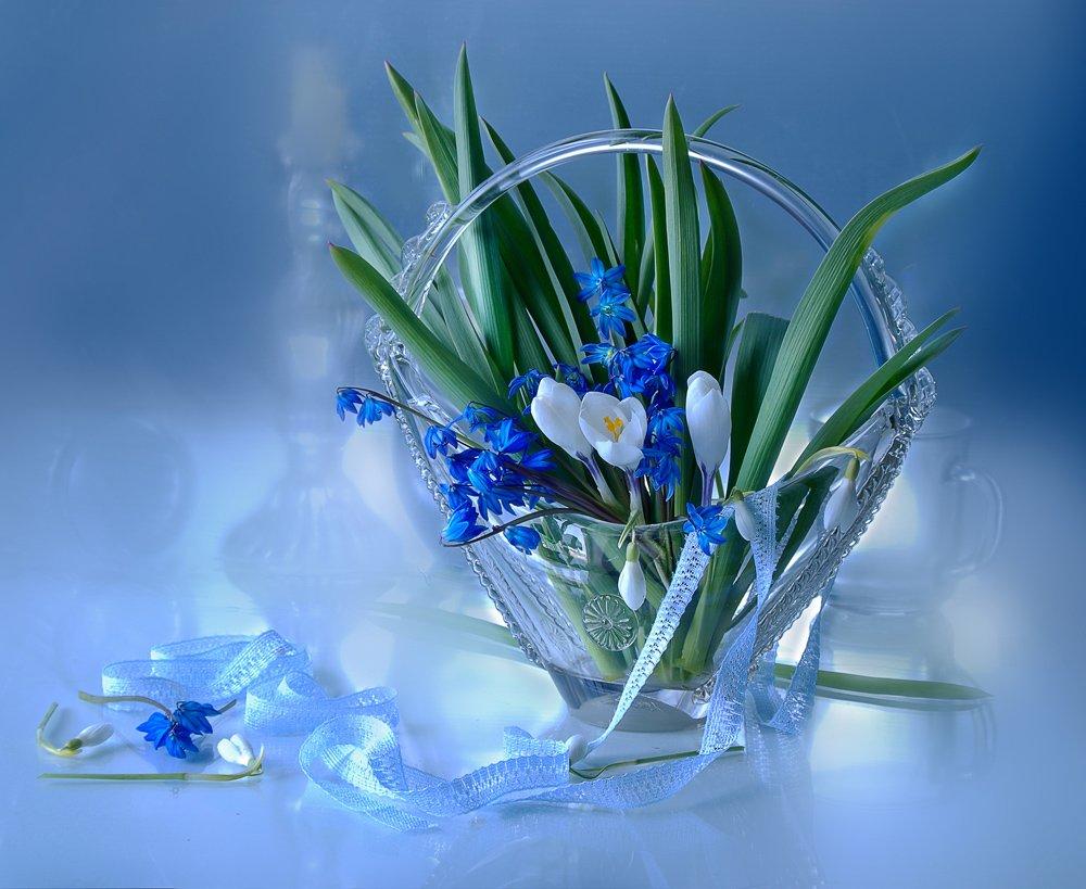 цветы , весна , перво цветы ,, Вера  Павлухина