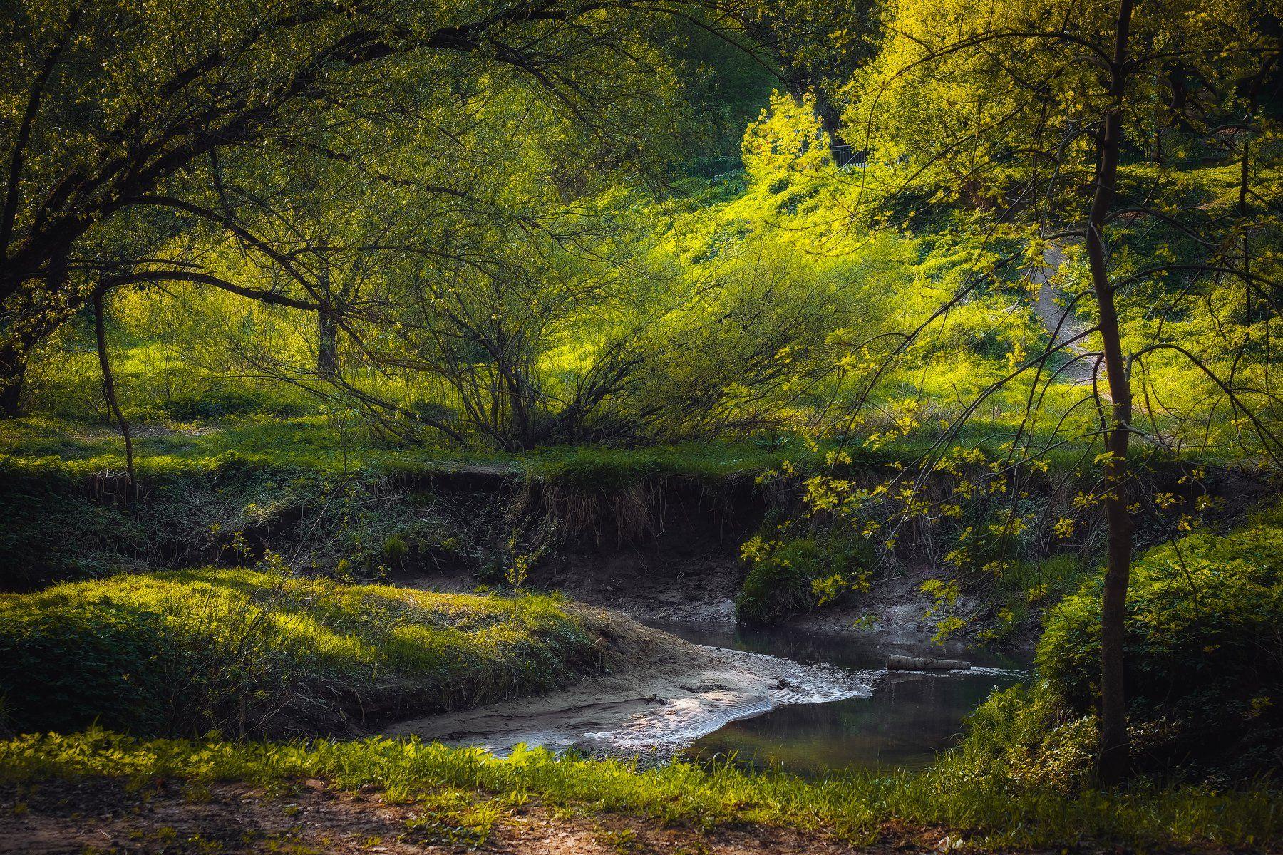 фото, природа, весна, сад, река, Екатерина