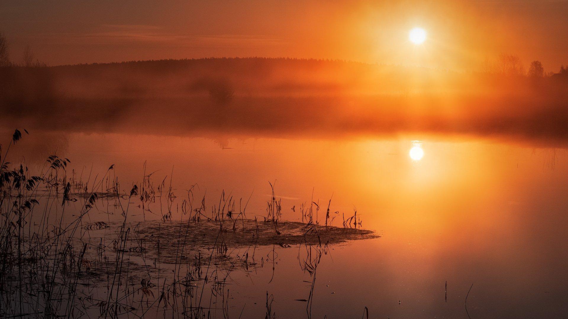 пейзаж, природа, весна, разлив, утро, рассвет, туман, солнце, восход, Андрей Чиж
