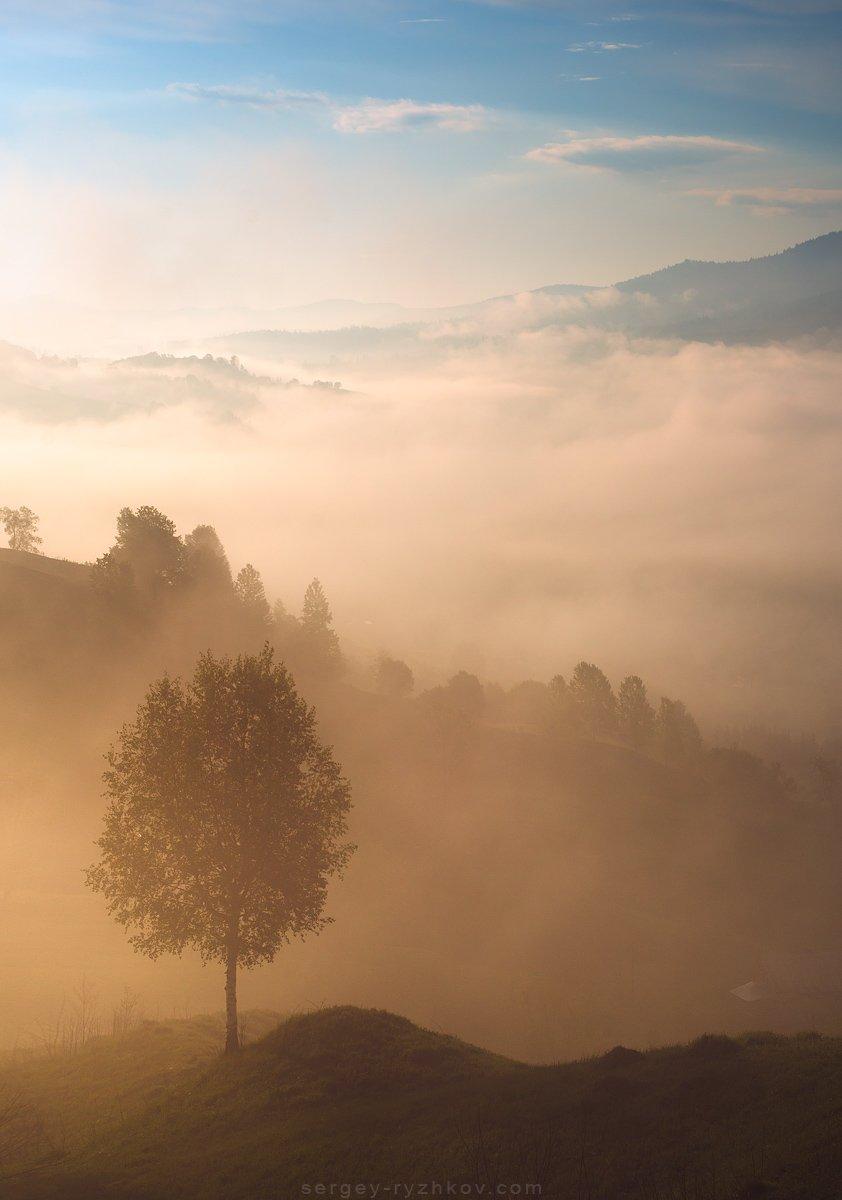 карпаты, горы, утро, туман, пейзаж, природа, украина, nature, carpathians, ukraine, landscape,, Сергей Рыжков