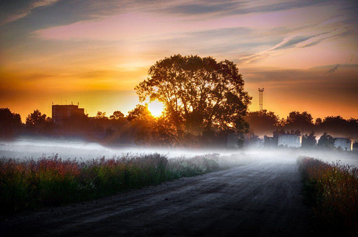 пригород, туман, утро, Rimantas Petrikas