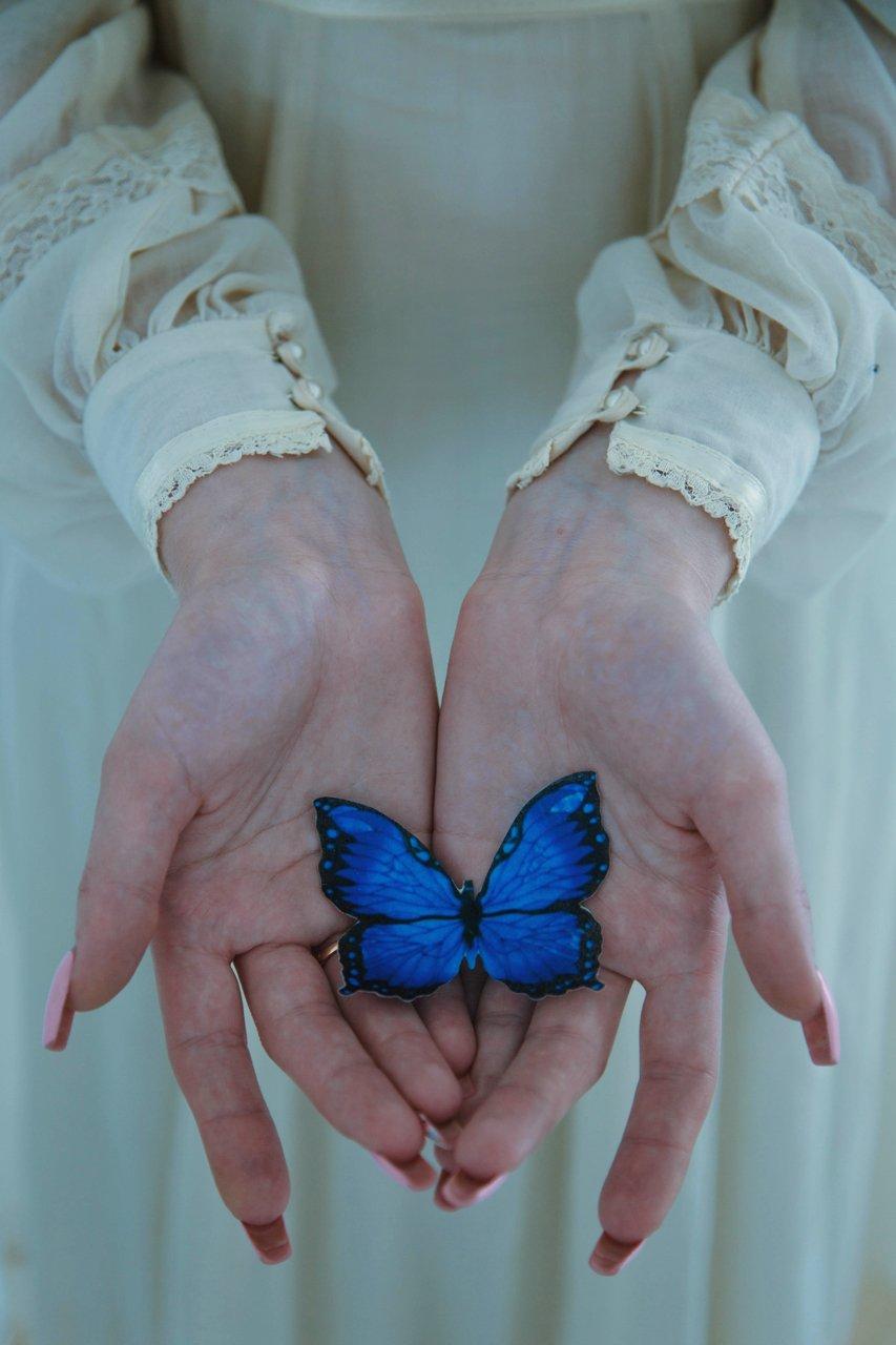 бабочка, Marie Dashkova