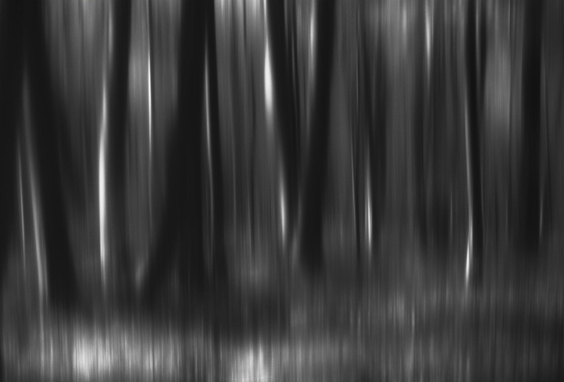 лес, арт, черно-белая фотография, чб, Olga  Wolkova