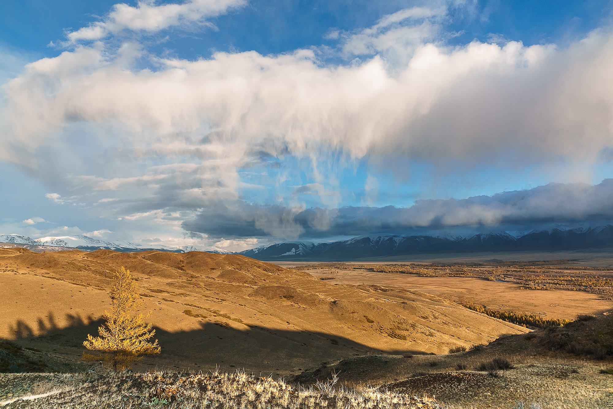 природа, пейзаж, горы, Алтай, Россия, закат, облака, небо, Курайская степь, Северо-Чуйский хребет, Лариса Николаевна