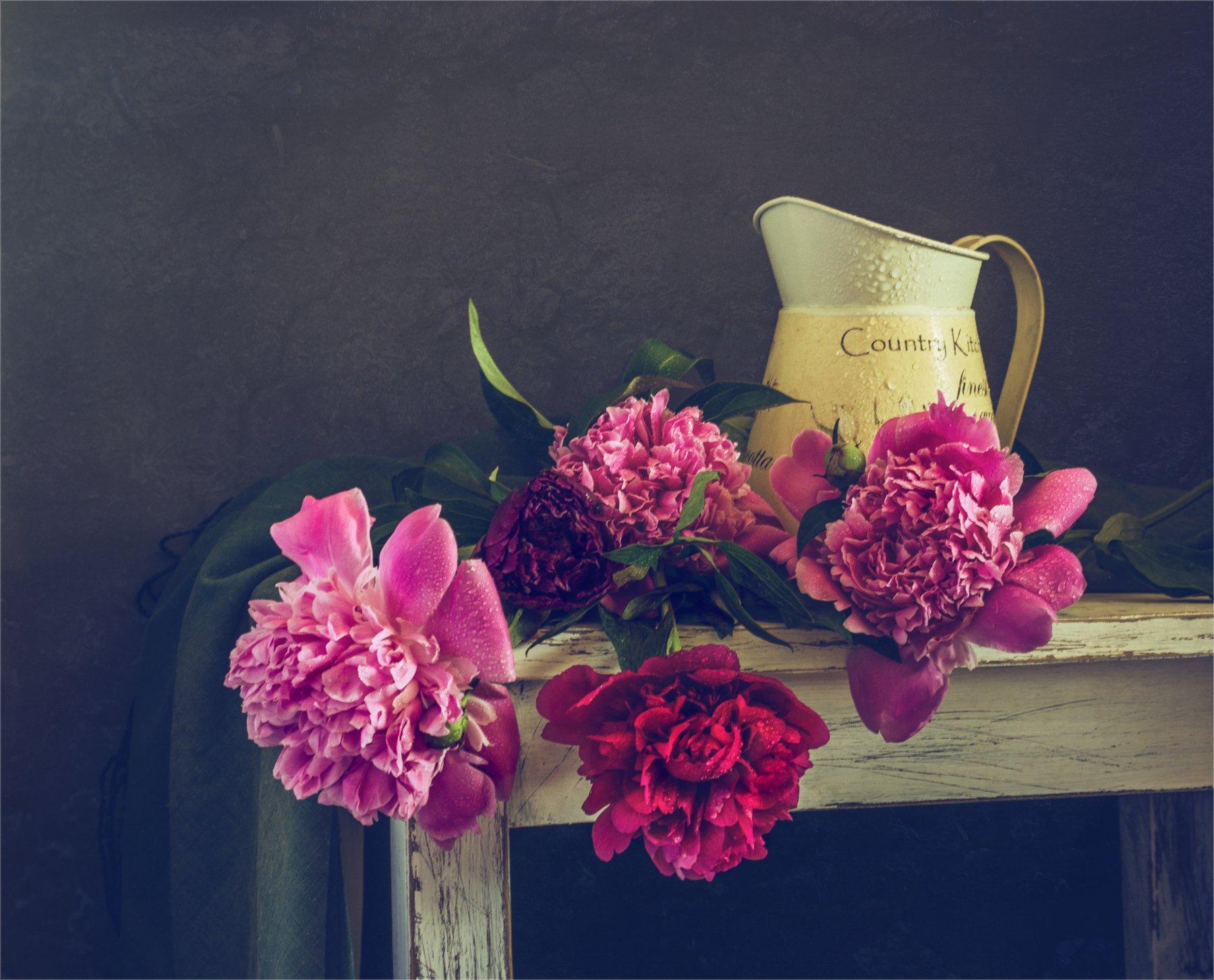 still life, натюрморт,    растение, природа,   кувшин,  винтаж, ретро, цветы, пионы, букет, капли, вода, Михаил MSH
