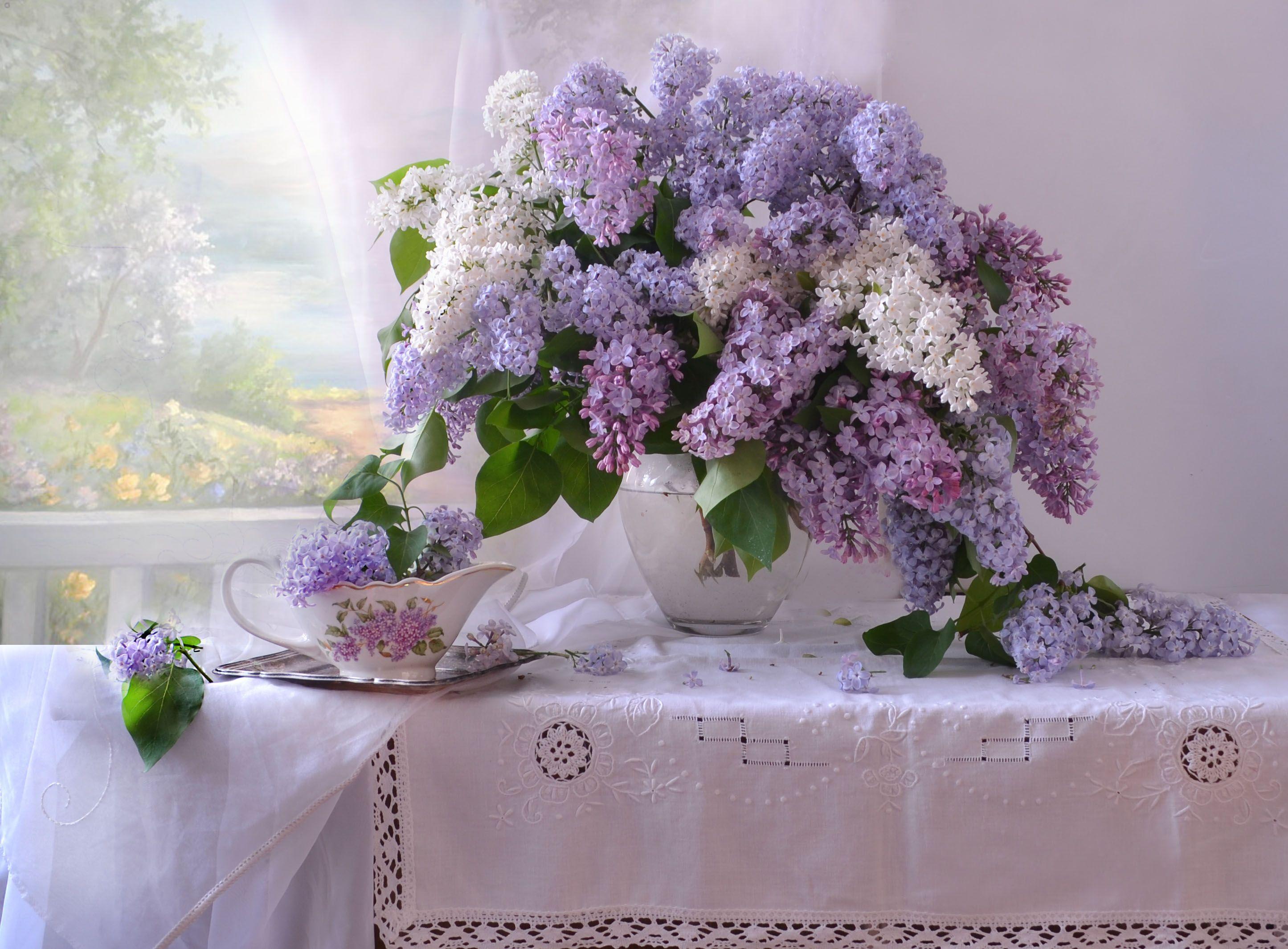 still life,натюрморт, цветы, фото натюрморт, фарфор, стекло, сирень, май, весна, Колова Валентина