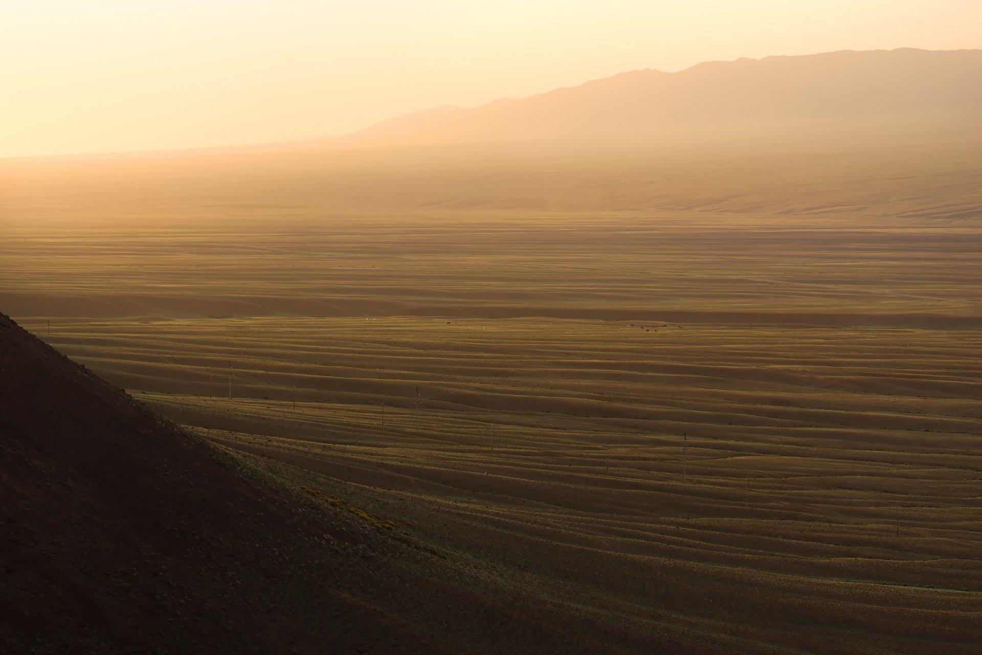 утро, восход солнца, линии, горный пейзаж, холмы, бартогай, казахстан, путешествие, Владимир