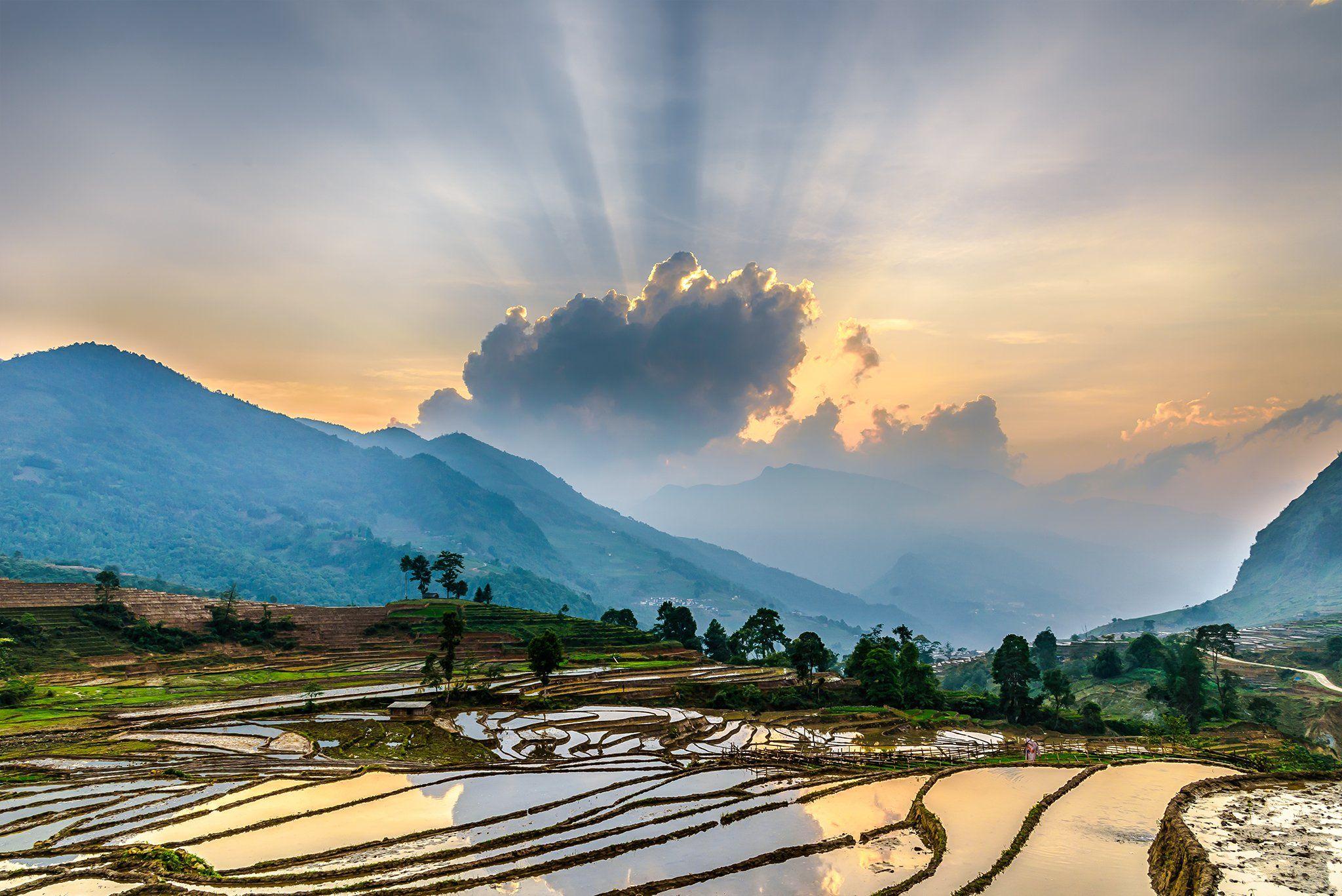 , Trần Koóng
