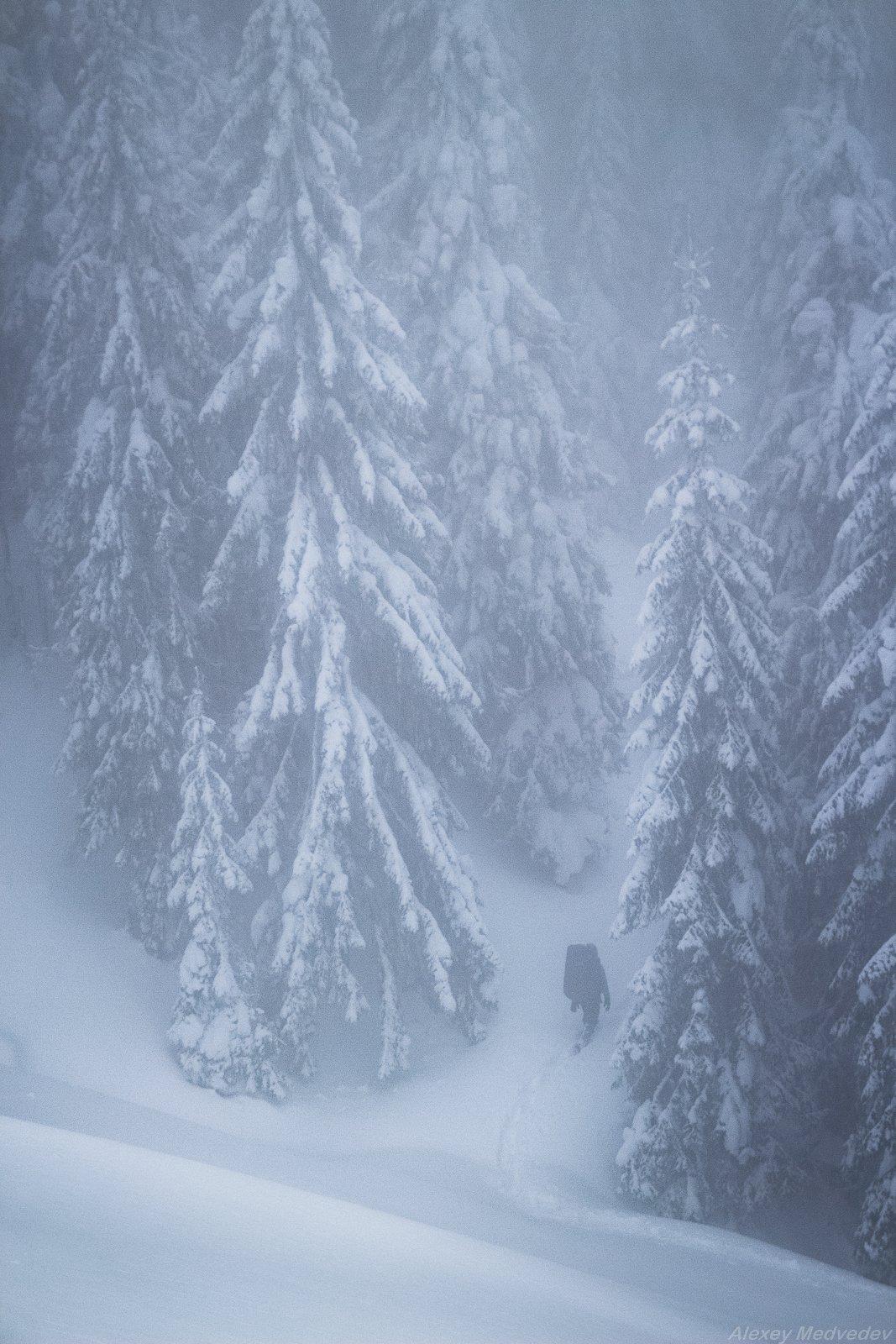 winter, cold, hut, house, forest, carpathains, man, Алексей Медведев