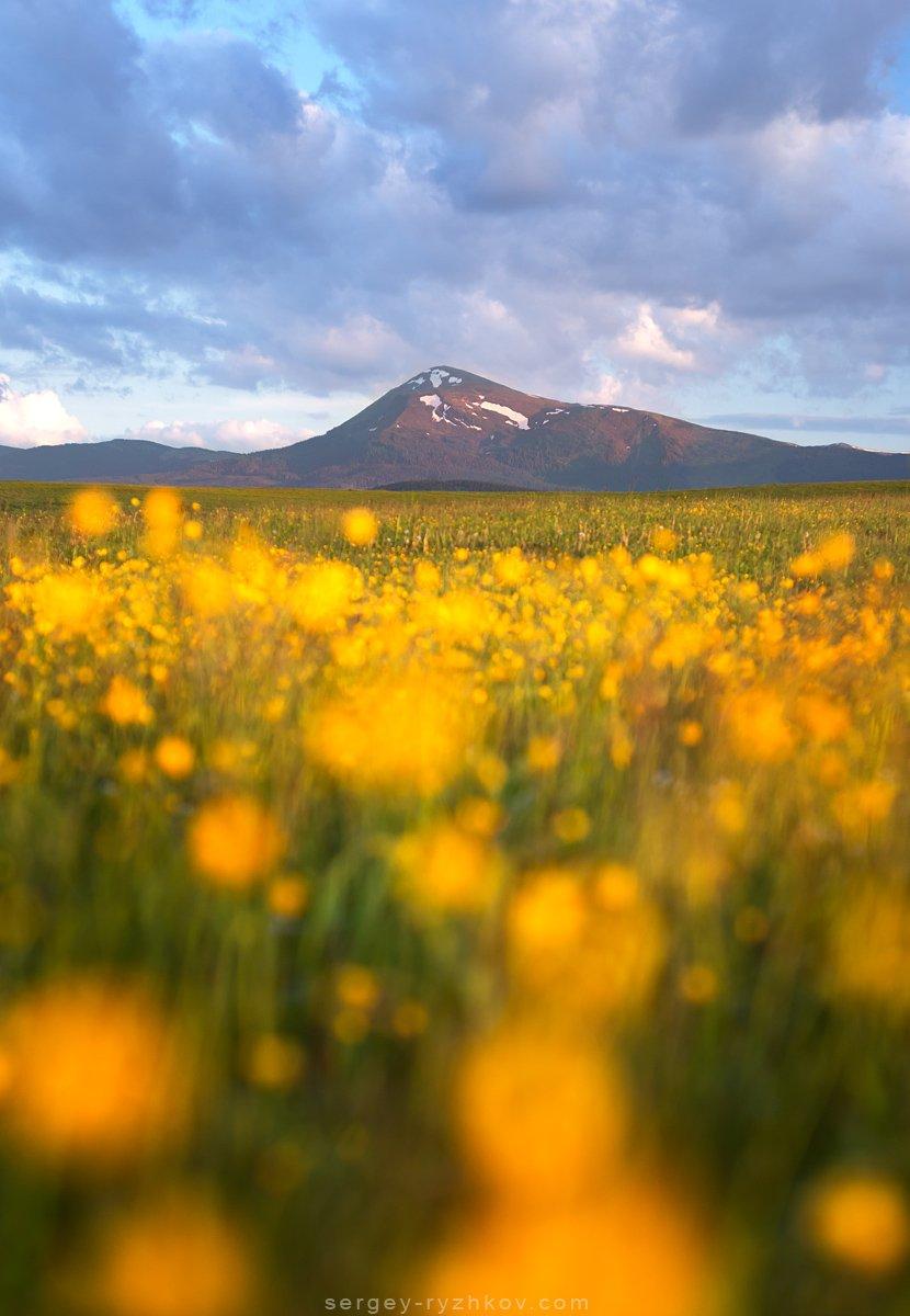 Карпаты, Украина, горы, пейзаж, природа, весна, nature, landscape, mountain, ukraine, carpathians, Сергей Рыжков
