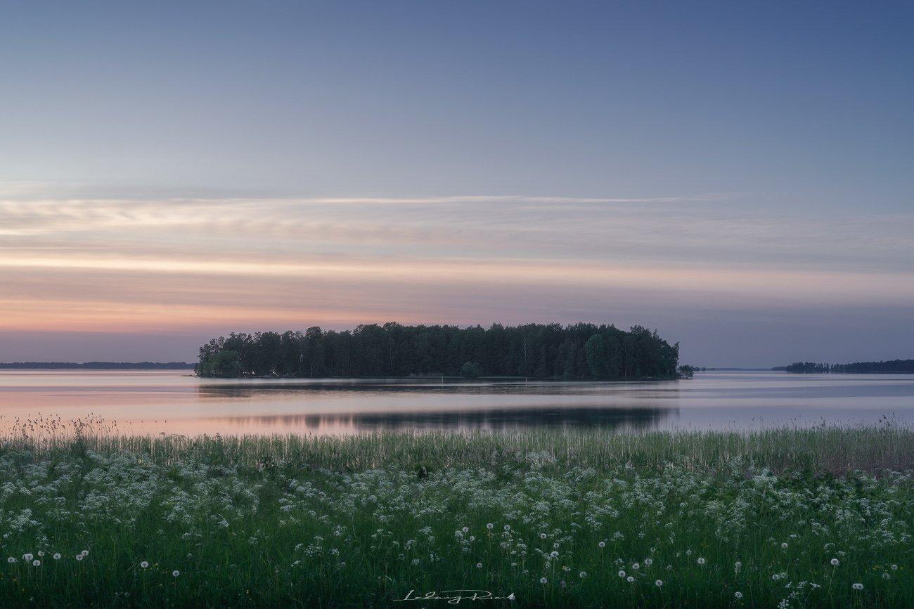 after sunset, calm, cow parcley, dandelion, evening, forest, grass, greens, harmony, hjälmaren, island, kalvön, lake, maedow, nature, nordern light, outdoors, scandinavia, silence, sweden, tranquility, trees, twilight, water, Ludwig Riml
